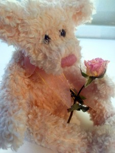 teddy-and-rose-1444432-m
